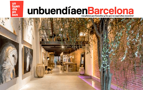 Un buen día en Barcelona | The Room Studio