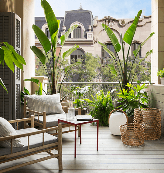 Premios Best of Houzz 2020 | The Room Studio