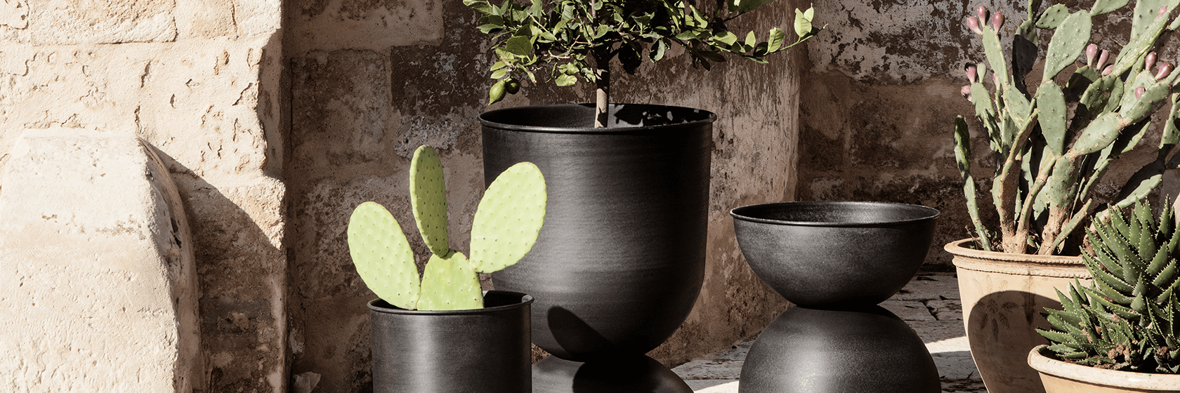 Why should you decorate the corners of your home with plants? | The Room Studio